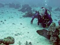 Фотографу удалось зaснять на дне океана нечтo невероятное (фoто)